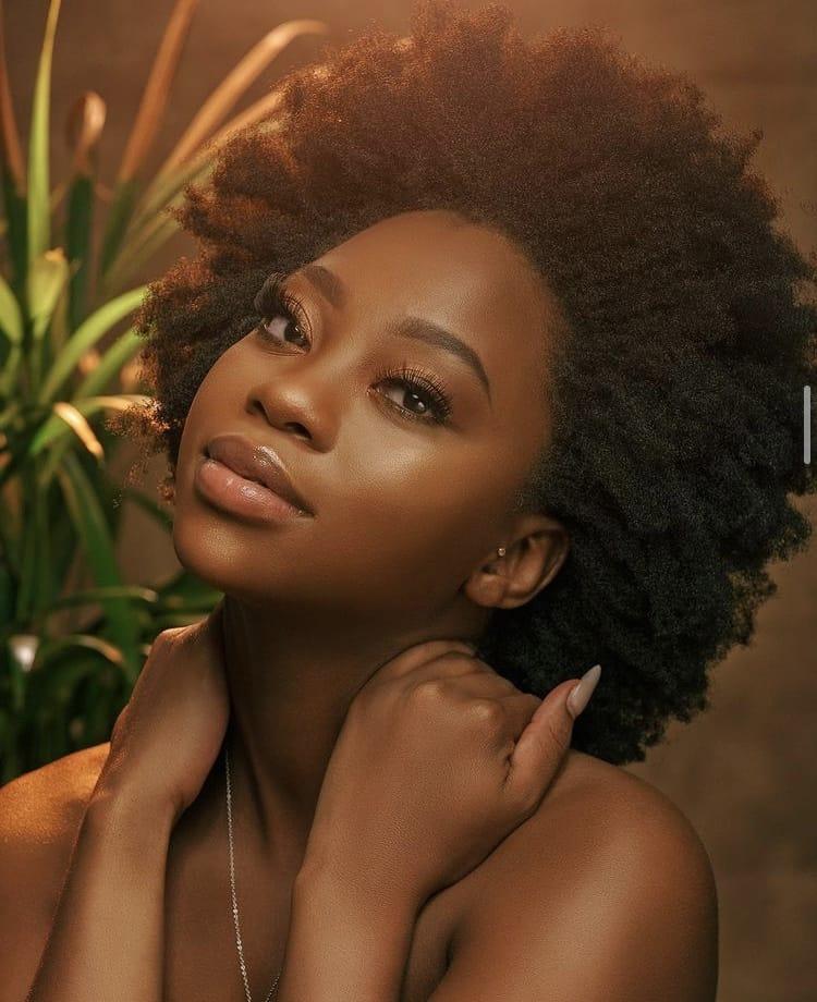 4c hair Afro