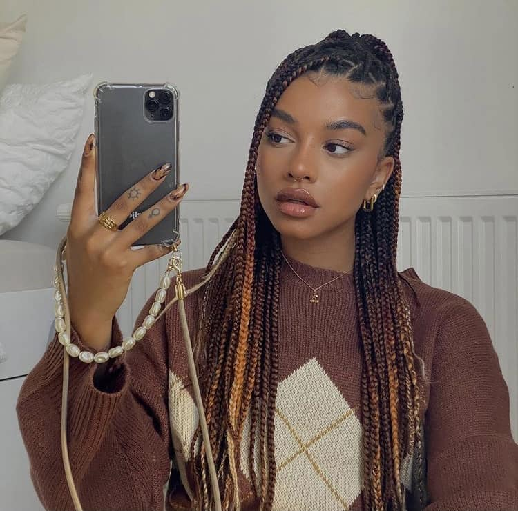 mixed colors knotless box braids
