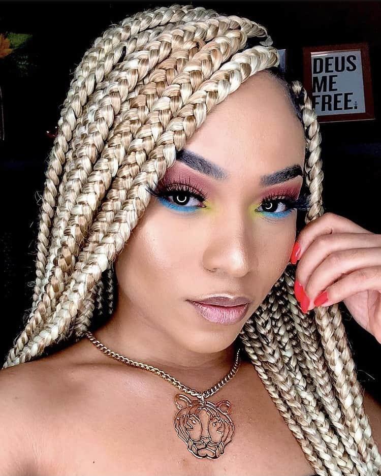 mixed blonde shades box braids